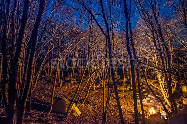 Tenda fogueira luz noite floresta Foto stock © vapi