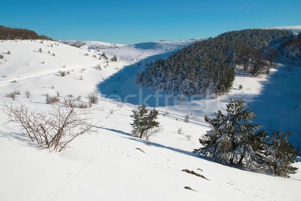 Snow-covered mountains. Stock photo © vapi