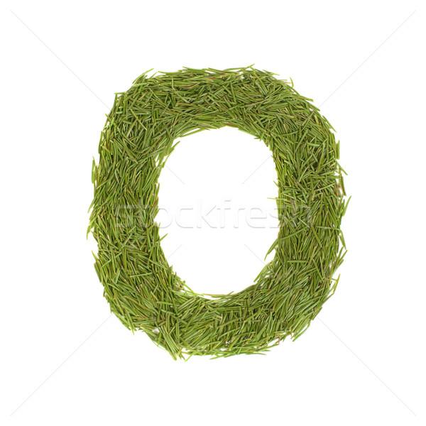 Zöld ábécé o betű izolált fehér tavasz Stock fotó © vapi