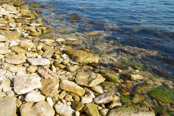 A coast with pebble and blue ocean water. Stock photo © vapi