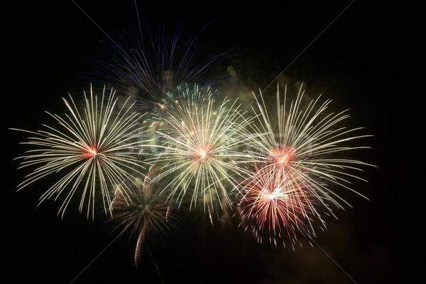 Belo fogos de artifício preto céu água trabalhar Foto stock © vapi