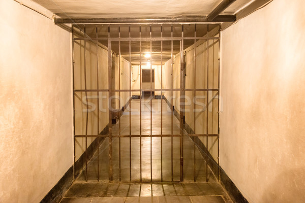 Prison cell with iron bars Stock photo © vapi