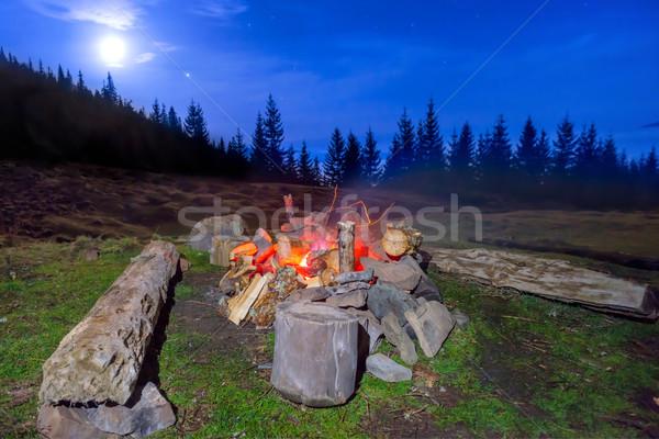 Fogueira noite floresta azul escuro céu Foto stock © vapi