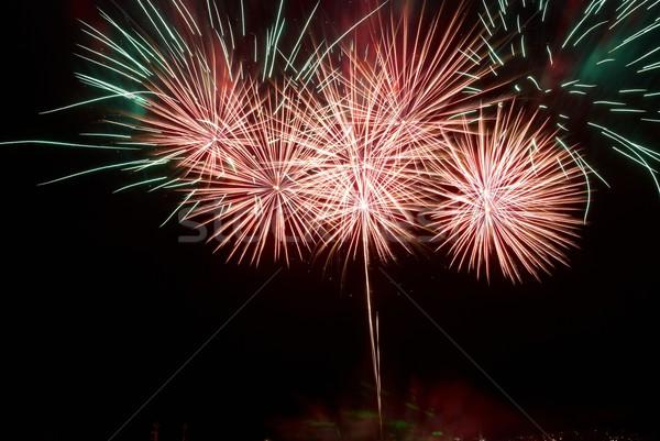 Belo fogos de artifício preto céu luz fundo Foto stock © vapi