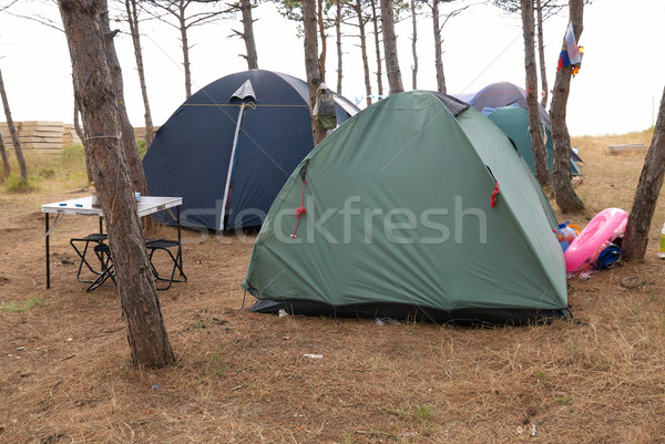 Campsite in the forest Stock photo © vapi