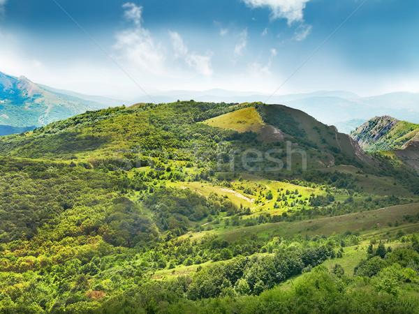 Green mountain Stock photo © vapi