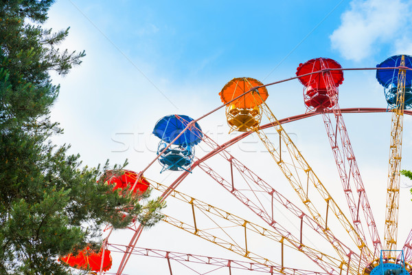Ferris wheel in the green park Stock photo © vapi