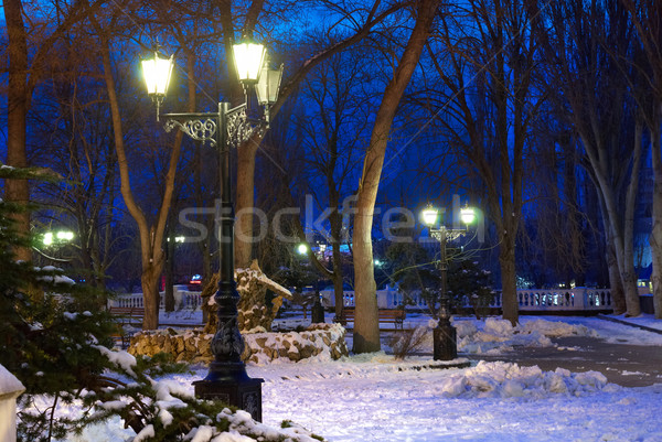 Nocturna de la ciudad escena luces nieve árbol primavera Foto stock © vapi