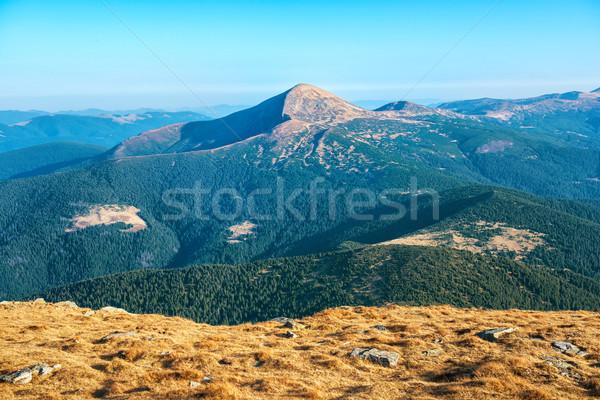 красивой долины гор Украина мнение трава Сток-фото © vapi