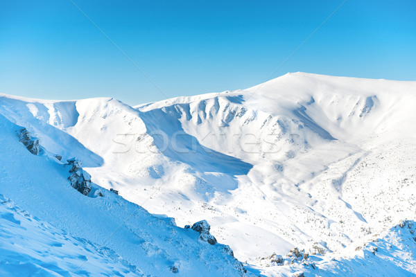 Range of mountains peaks in snow Stock photo © vapi