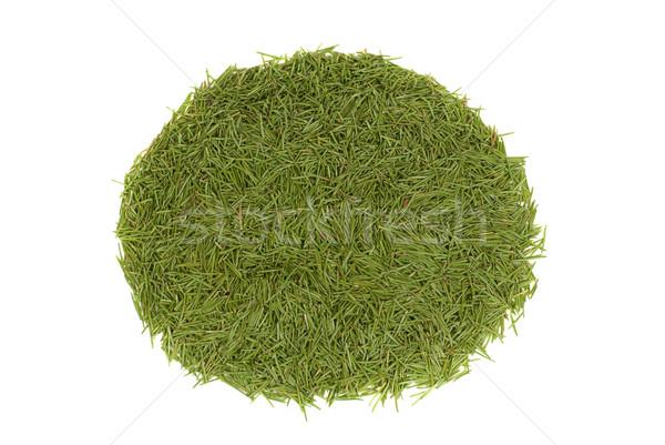 Círculo verde agujas aislado blanco Foto stock © vapi