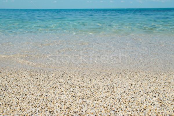 Tropical sand beach Stock photo © vapi
