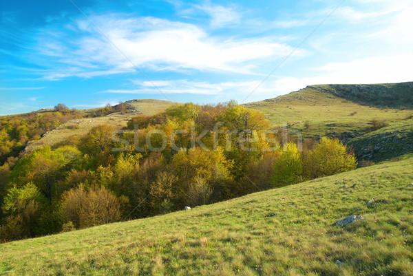 Hills with cloudscape Stock photo © vapi