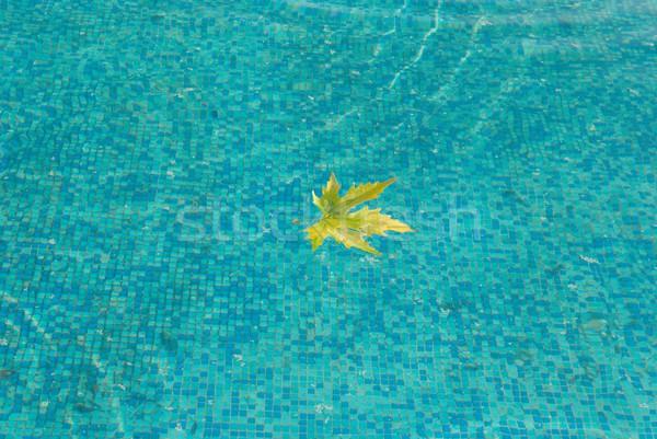 Azul superfície da água amarelo folha água textura Foto stock © vapi