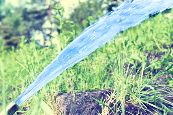 Stock photo: Sprinkler watering the green lawn
