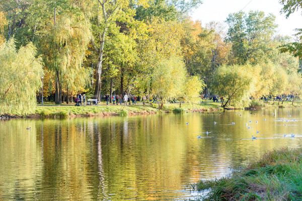 Lake in the city park with walking people Stock photo © vapi
