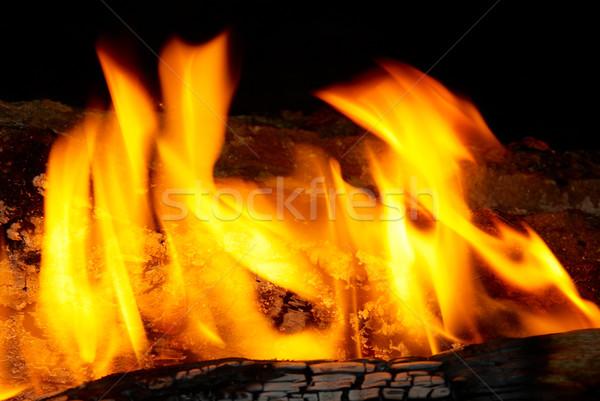 Láng tippek tűzifa textúra absztrakt természet Stock fotó © vapi