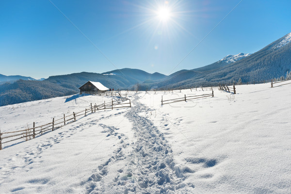 Winter landscape with a old rural house Stock photo © vapi