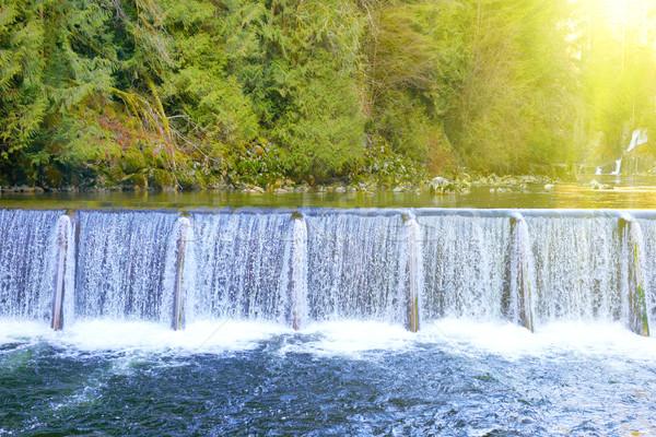 Wasserfall Kaskade Streaming nach unten grünen Wald Stock foto © vapi