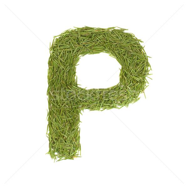 Green alphabet, letter P Stock photo © vapi