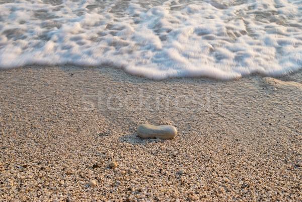 Tenger homok tengerpart trópusi kő hullámok Stock fotó © vapi