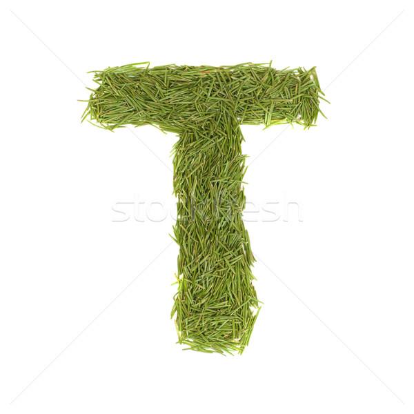 Zöld ábécé t betű izolált fehér tavasz Stock fotó © vapi