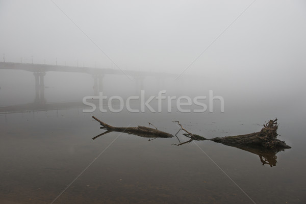 Köprü nehir puslu sabah büyük yol Stok fotoğraf © vapi