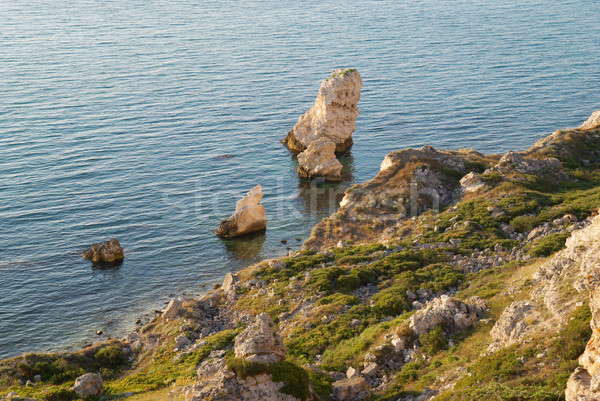 A coastline with many big rocks. Stock photo © vapi