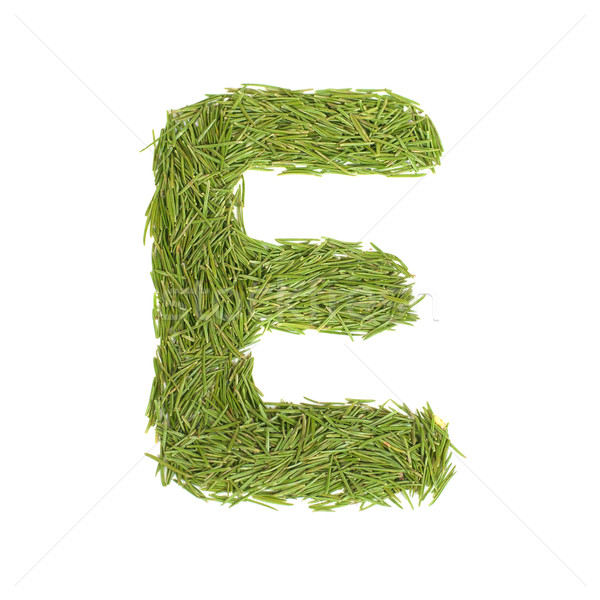 Green alphabet, letter E Stock photo © vapi