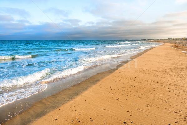 Lange tropischen Sandstrand surfen Meer Wellen Stock foto © vapi
