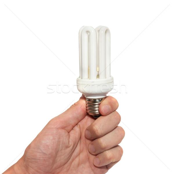 Economía lámpara mano aislado blanco negocios Foto stock © vapi