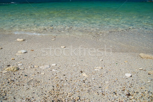 Sea sand beach  Stock photo © vapi