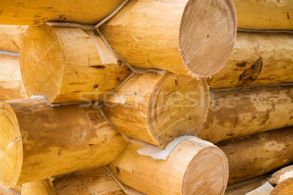 Wall under construction of country wooden house Stock photo © vapi