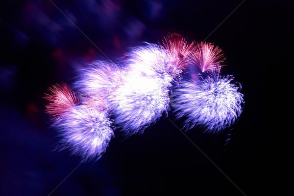 Gyönyörű tűzijáték fekete égbolt fény háttér Stock fotó © vapi