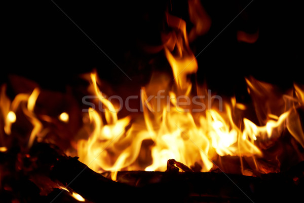 Fire in fireplace. Stock photo © vapi