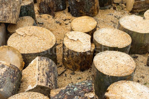 Fából készült tölgyfa textúra fa fa háttér Stock fotó © vapi