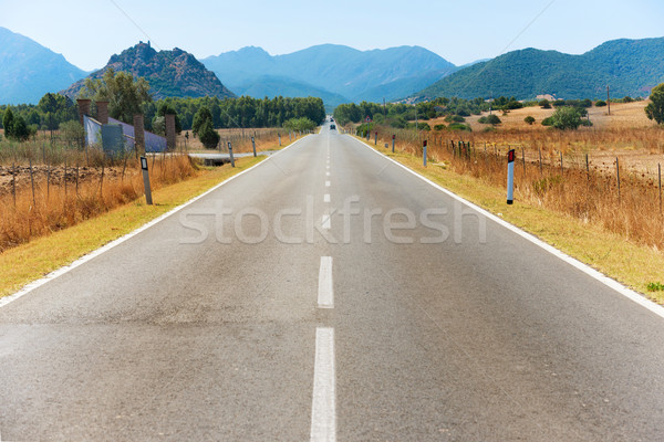 Highway road with mountains on horizon Stock photo © vapi
