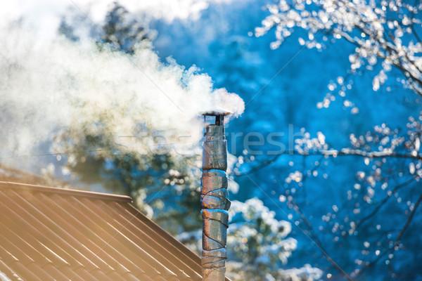 Dymu komin dachu drzewo wiosną Zdjęcia stock © vapi