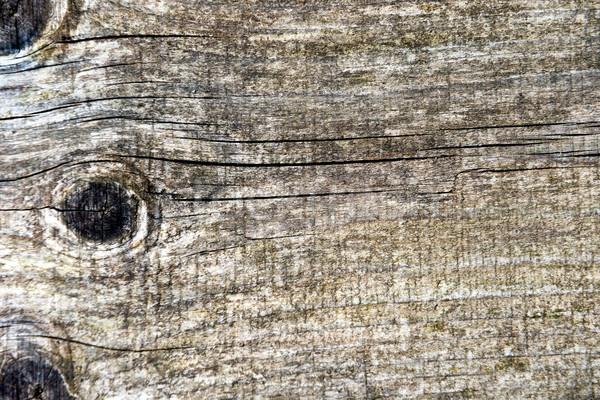 öreg grunge szürke fából készült textúra szürke Stock fotó © vapi