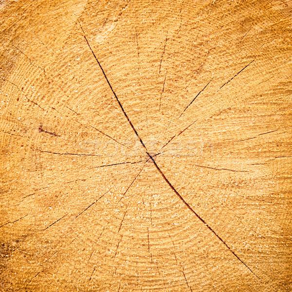 Light yellow cracked wooden texture Stock photo © vapi
