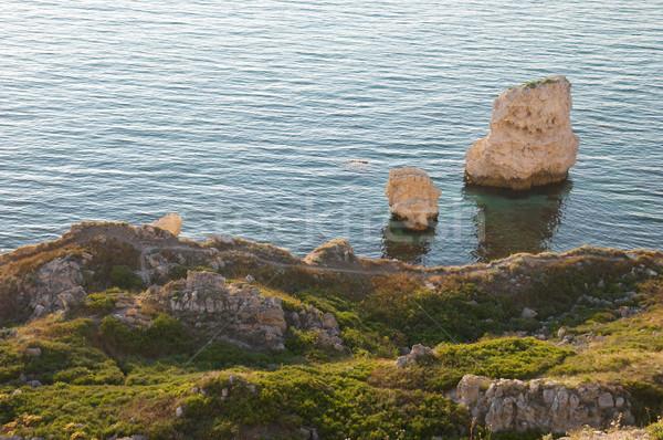 A coastline with many big rocks. Stock photo © vapi