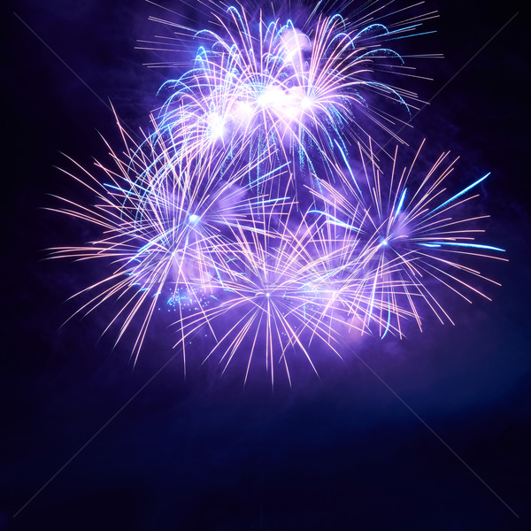 Сolorful fireworks  Stock photo © vapi