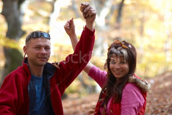 Zdjęcia stock: Objętych · pozostawia · jesienią · parku