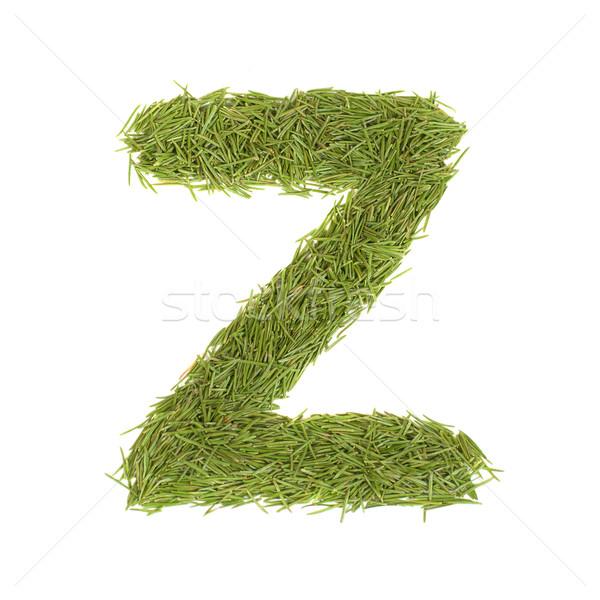 зеленый алфавит письмо z изолированный белый весны Сток-фото © vapi
