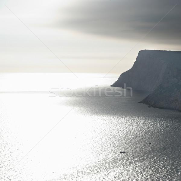 Higgadt tengeri kilátás viharos égbolt ezüst tenger Stock fotó © vapi