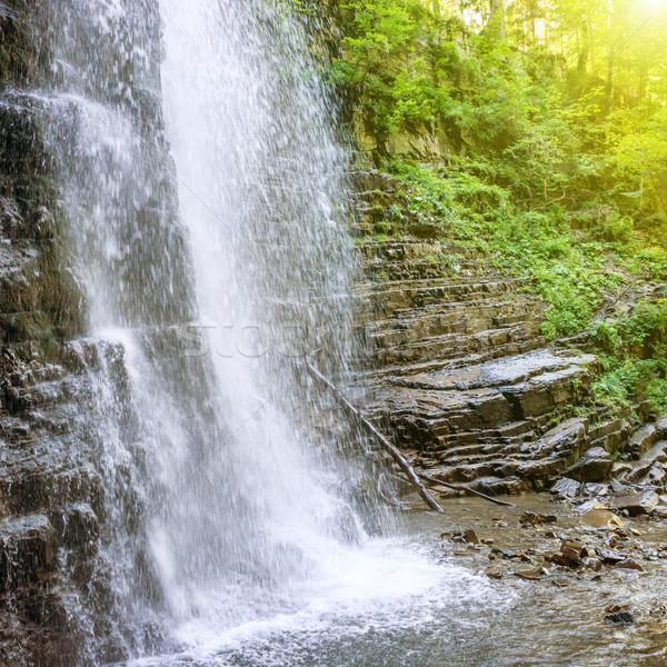Gyönyörű vízesés erdő magas zöld fa Stock fotó © vapi