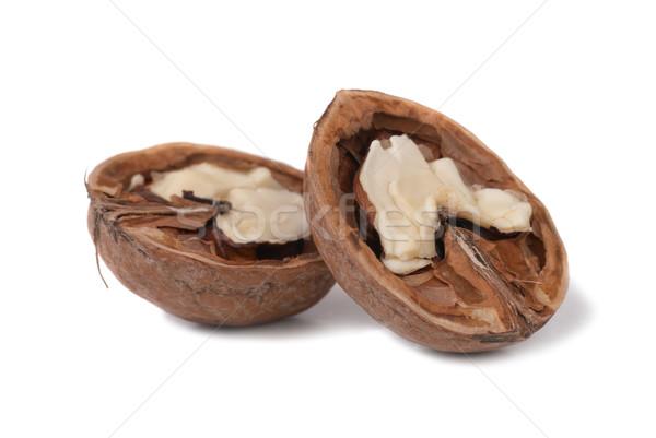 Halves of walnut Stock photo © vapi