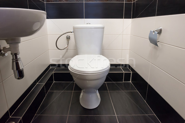 Home flush toilet Stock photo © vapi
