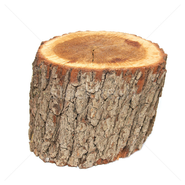 Stock photo: Wooden stump