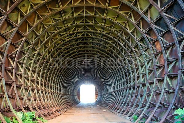 Tunnel and light in the end of it Stock photo © vapi